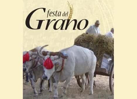 Photo di Festa del Grano