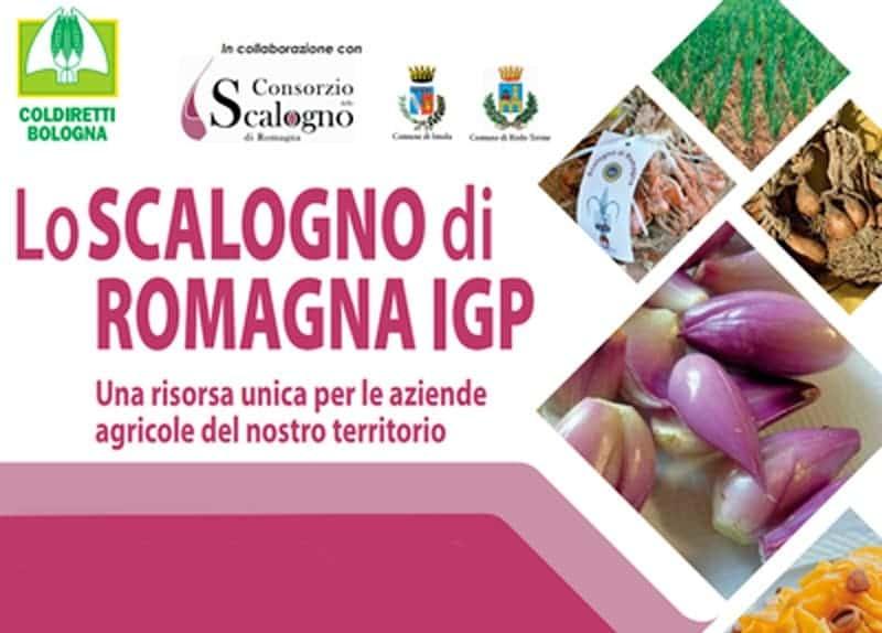 Photo di Fiera dello Scalogno di Romagna IGP