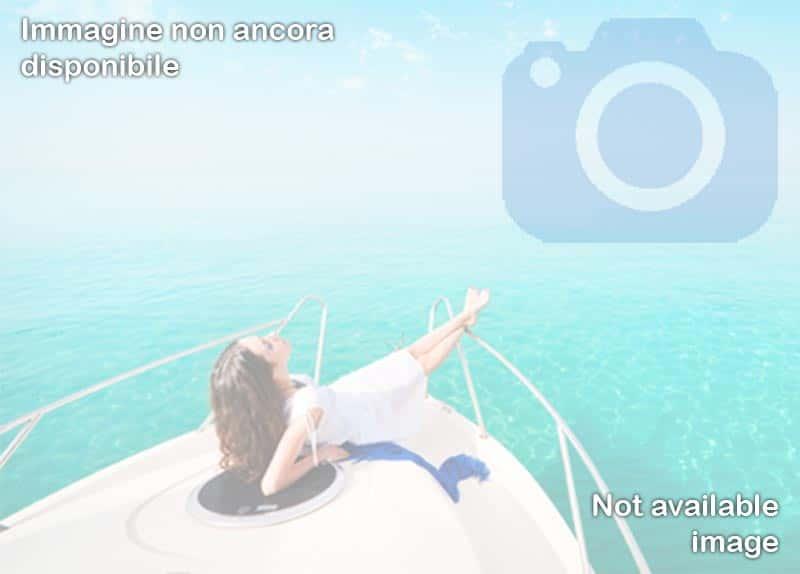 Dolphin Boat - Desenzano del Garda