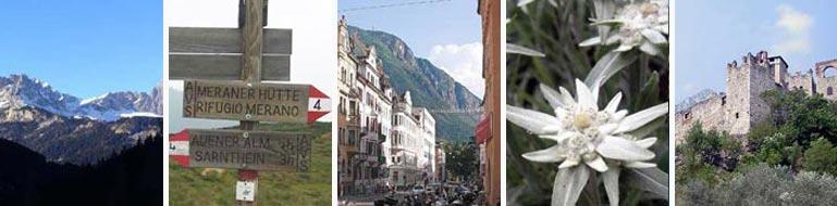 info Trentino-Alto Adige