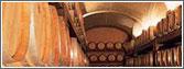 Vini: produzione vino / cantine